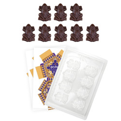 CHOCOLATE FROG MOLD AND PAPER BOX HARRY POTTER SET