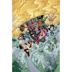 YOUNG JUSTICE TP BOOK 4