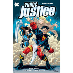 YOUNG JUSTICE TP BOOK 2