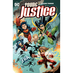 YOUNG JUSTICE TP BOOK 3