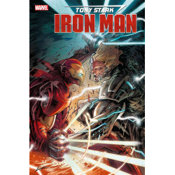 TONY STARK IRON MAN 17