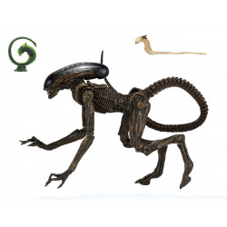 DOG ALIEN 3 FIGURINE ULTIMATE 23 CM