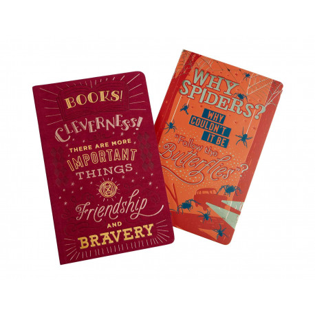 RON AND HERMIONE HARRY POTTER NOTEBOOK SET