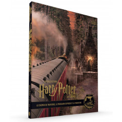 LA COLLECTION HARRY POTTER AU CINEMA, 2 : LE CHEMIN DE TRAVERSE, LE POUDLARD EXPRESS ET LE MINISTERE