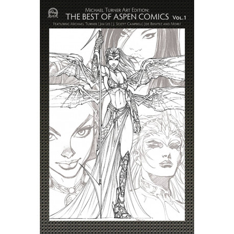 TURNER ART EDITION BEST OF ASPEN COMICS VOL 1 CVR A