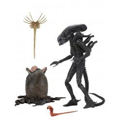 Big Chap Alien 1979 figurine Ultimate 40th Anniversary 23 cm