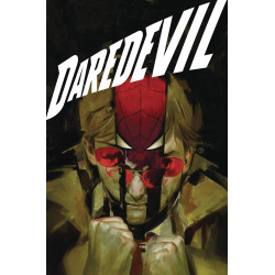 DAREDEVIL BY CHIP ZDARSKY TP VOL 3 THROUGH HELL