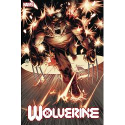 WOLVERINE 3 DX