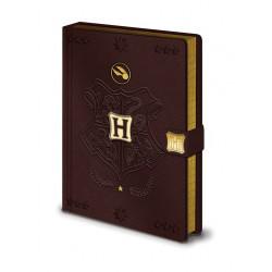 HARRY POTTER CARNET DE NOTES PREMIUM A5 QUIDDITCH