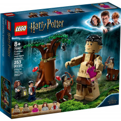LEGO HARRY POTTER LA FORÊT INTERDITE LA RENCONTRE DOMBRAGE 75967