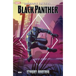 MARVEL ACTION BLACK PANTHER TP BOOK 1 STORMY WEATHER