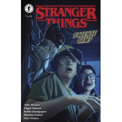 STRANGER THINGS SCIENCE CAMP 1 CVR C RUIZ
