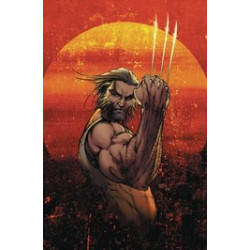 WEAPON X 1 VAR CVR A MICHAEL TURNER