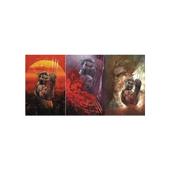 WEAPON X 1 CVRS A B C TURNER SET