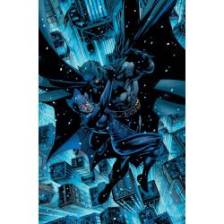 BATMAN CATWOMAN 1 JIM LEE VAR ED