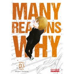 MANY REASONS WHY - TOME 3 (VF) - VOL03
