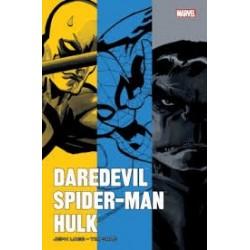 DAREDEVIL/SPIDER-MAN/HULK PAR LOEB ET SALE