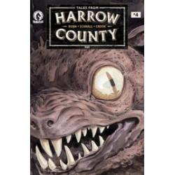 TALES FROM HARROW COUNTY FAIR FOLK 4 CVR A SCHNALL