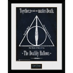 HARRY POTTER DEATHLY HALLOWS COLLECTOR FRAME 45 X 34 CM