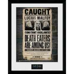 LUCIUS MALFOY HARRY POTTER COLLECTOR FRAME 45 X 34 CM