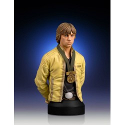 LUKE SKYWALKER HERO OF YAVIN STAR WARS MINI BUST