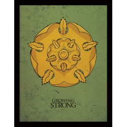 GROWING STRONG TYRELL GAME OF THRONES FRAMED POSTER