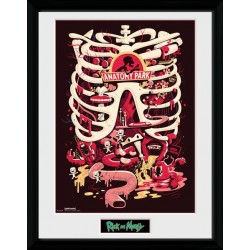 RICK AND MORTY ANATOMY PARK COLLECTOR FRAME 45 X 34 CM