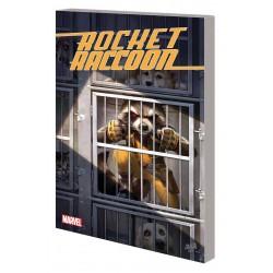 ROCKET RACCOON GROUNDED