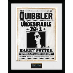 QUIBBLER HARRY POTTER COLLECTOR FRAME 45 X 34 CM