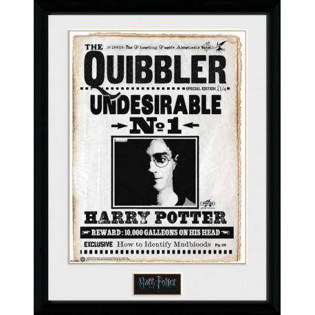 QUIBBLER HARRY POTTER COLLECTOR FRAME 45 X 34 CM - Album Comics