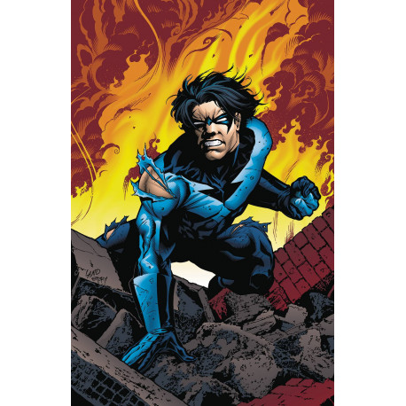 NIGHTWING VOL.6 TO SERVE AND PROTECT