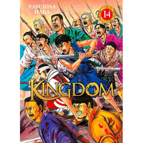 Kingdom Tome 14 Manga Livre