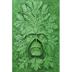 ABSOLUTE SWAMP THING HC VOL 1 BY ALAN MOORE